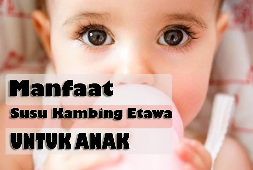 Susu Kambing Bermanfaat Anak Biar Sehat dan Cerdas
